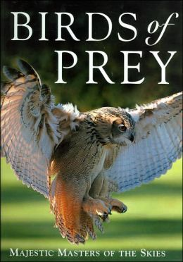 Birds of Prey: Majestic Masters of the Skies