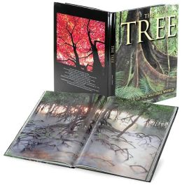 The Tree: Wonder of the Natural World