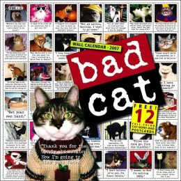 2007 Bad Cat Wall Calendar