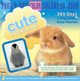2009 Cute Overload Page-A-Day Calendar