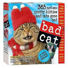 2011 Bad Cat