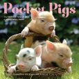 Book Cover Image. Title: 2014 Pocket Pigs:  The Famous Teacup Pigs of Pennywell Farm Wall Calendar, Author: Richard Austin