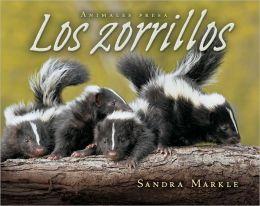 Los Zorrillos (Skunks)