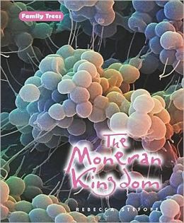 The Moneran Kingdom