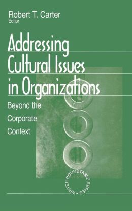 Addressing Cultural Issues in Organizations: Beyond the Corporate Context