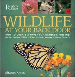 Wildlife at Your Back Door: How to Create a Haven for Nature's Friends