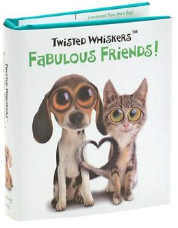 Fabulous Friends! Little Gift Book