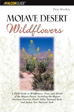 Mojave Desert Wildflowers: A Field Guide to the Wildflowers of the Mojave Desert, Including the Mojave National Preserve and Joshua Tree National Park
