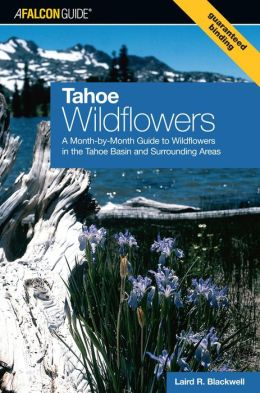 Tahoe Wildflowers: A Month-by-Month Guide to Wildflowers in the Tahoe Basin and Surrounding Areas