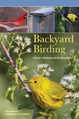 Backyard Birding: A Guide to Attracting and Identifying Birds