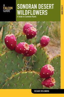 Sonoran Desert Wildflowers, 2nd: A Guide to Common Plants