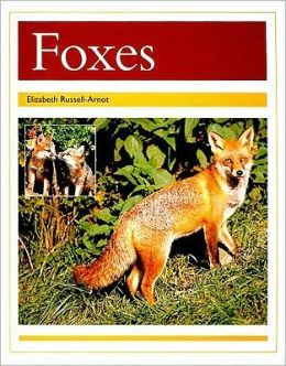 Rigby PM Collection: Individual Student Edition Gold (Levels 21-22) Foxes