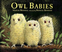 Owl Babies (Candlewick Press Big Books Series)