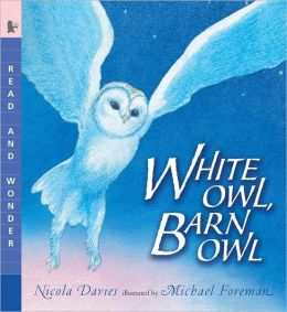 White Owl, Barn Owl (Read and Wonder Series)