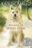 Book Cover Image. Title: Because of Winn-Dixie, Author: Kate DiCamillo