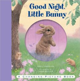 Good Night, Little Bunny: A Changing-Picture Book