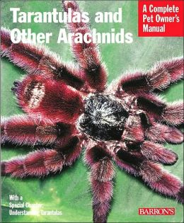 Tarantulas and Other Arachnids