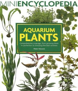 Aquarium Plants: Comprehensive Coverage, from Growing Them to Perfection to Choosing the Best Varieties