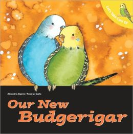 Let's Take Care of Our new Budgerigar
