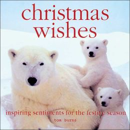 Christmas Wishes: Inspiring Lessons for the Festive Season