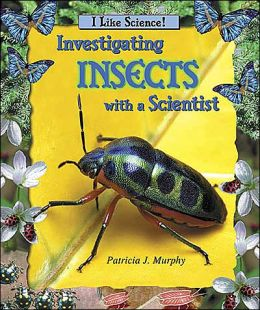 Investigating Insects with a Scientist