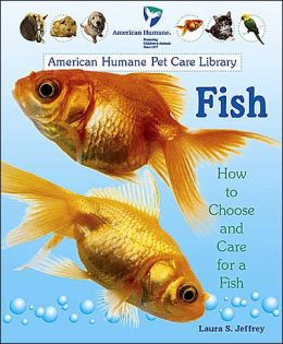 Fish: How to Choose and Care for a Fish