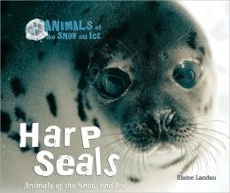 Harp Seals: Animals of the Snow and Ice