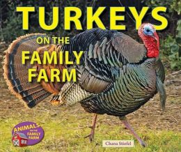 Turkeys on the Family Farm