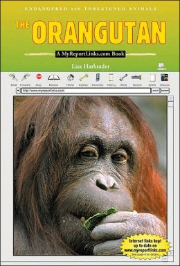 The Orangutan: A Myreportlinks. com Book
