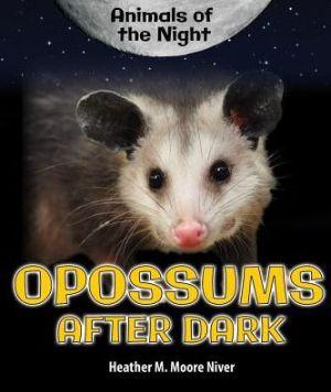 Opossums After Dark