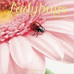 2011 Ladybugs Wall Calendar