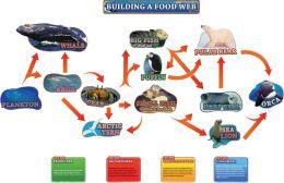 Building a Food Web Bulletin Board Set