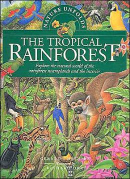Nature Unfolds the Tropical Rainforest