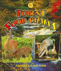 Forest Food Chains ( Food Chain Series)