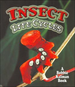 Insect Life Cycles (World of Insects Series)