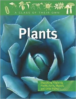 Plants: Flowering Plants, Ferns, Mosses, and Other Plants