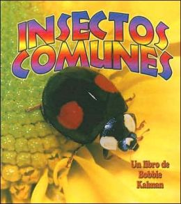 Insectos comunes (Everyday Insects)