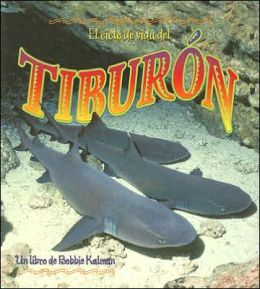 El ciclo de vida del tiburon (The Life Cycle of the Shark)