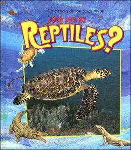 ?Que Son los Reptiles?