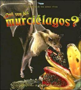 Que Son Los Murcielagos? (What Is a Bat?)