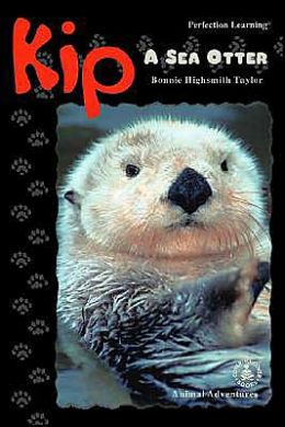 Kip: a Sea Otter
