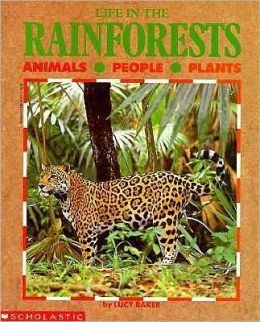 Life in the Rainforests