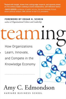 Teaming: How Organizations Learn