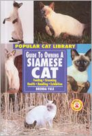 Guide to Owning a Siamese Cat