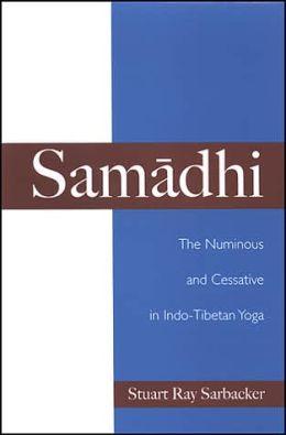 Samadhi: The Numinous and Cessative in Indo-Tibetan Yoga