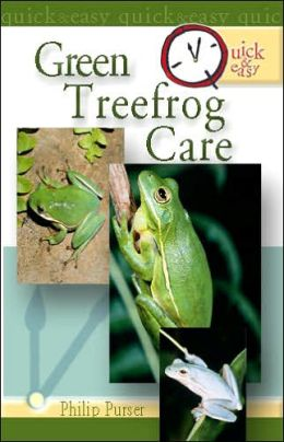 Quick and Easy Green Treefrog Care