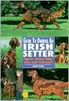 Guide to Owning an Irish Setter