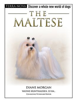 The Maltese: Discover a Whole New World of Dogs