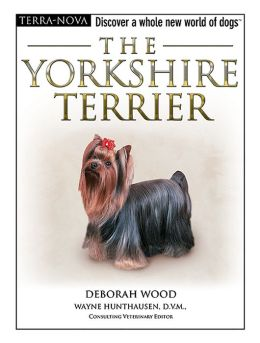 The Yorkshire Terrier: Discover a Whole New World of Dogs