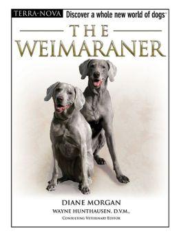 The Weimaraner